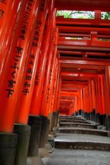 Fushimi Inari Taisha (Xelisabetta) Tags: japan canon nippon giappone fushimiinaritaisha  kyto  xelisabetta elisabettagonzales