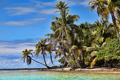 More Paradise (vgm8383) Tags: ocean shadow sky cloud beach clouds canon polynesia sand paradise honeymoon horizon palm pacificocean southpacific 5d tahiti bluelagoon mkii atoll rangiroa frenchpolynesia turquoisewater tuamotus avatoru frons vastsky kehau canon5dmkii tekokota 5dmkii