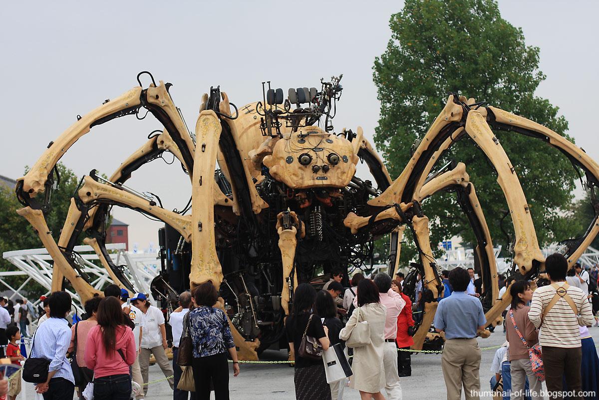 Yokohama Spider