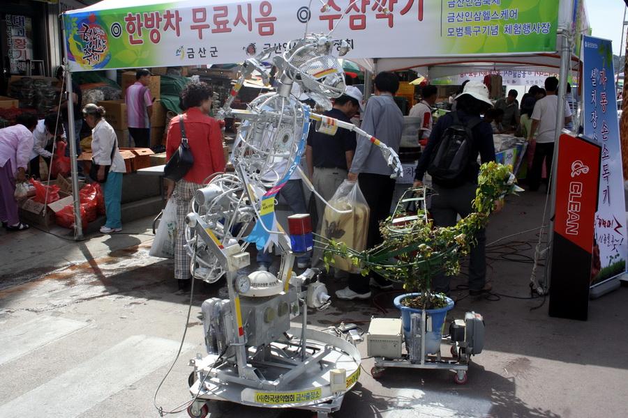 Geunsan ginseng festival