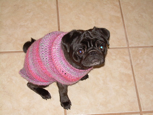 Meiby in her sweater