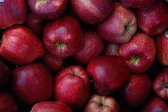 Mele (GionnyWeb) Tags: italy mountain apple nature fruits fruit reflex nikon italia natura eco frutta montagna mele mela biancaneve frutto d40 nikond40