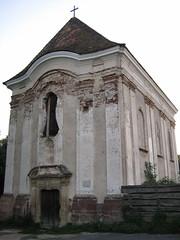 Veszprm, Jezsuita kolostorrom (laszlo.osvald) Tags: veszprm jezsuitakolostorrom