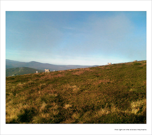 First Light, Wicklow Mountains