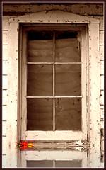 Brighten the corner where you are! (Heart Windows Art) Tags: fall broken window corner leaf pain christ shed dirty fallen bible strength pane brighten contentment verse