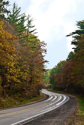 fallwindingroad