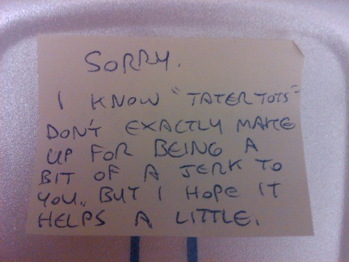 Sorry. I know tater tots don't exactly make up for being a bit of a jerk to you, but I hope it helps a little.
