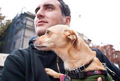 humans are weird (petit hiboux) Tags: dog marathon nycmarathon stuart nano brooklynny newyorkcitymarathon nov12009 ing2009marathon marathonmile5
