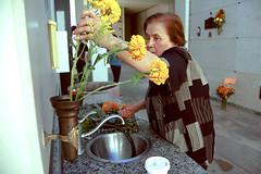 (pixxelhead-) Tags: flowers beloved