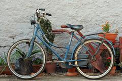 Reperto (Giovanni Sodano) Tags: muro verde blu campagna fiori rosso atmosfera vaso magnum aratro bicicletta campestre granito terriccio