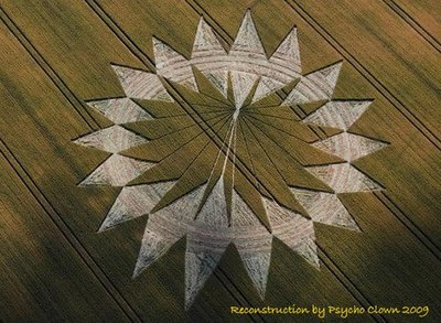 Crop Circle  Solar Flares Coronal Mass Ejections Cannings Cross, Near Allington, Wiltshire, Reported 10th July 2009