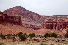 Capitol Reef National Park, Utah (twiga_swala) Tags: park usa southwest nature landscape utah us scenery natural united canyon capitol national sp canyonlands environment states geology np wilde