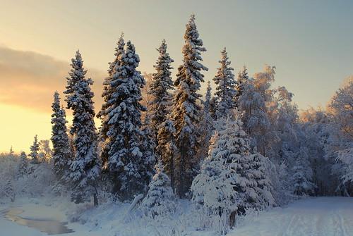 Alaska Anchorage Mid Day