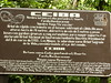 Ceiba tree info....