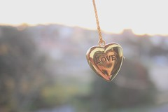 168/365 was made for me and you (Honey Pie!) Tags: love necklace heart bokeh amor coeur days honey amour coração romantic 365 colar romântico softtones alicedisse 365days 365daysproject 365dias 365daysofhoney