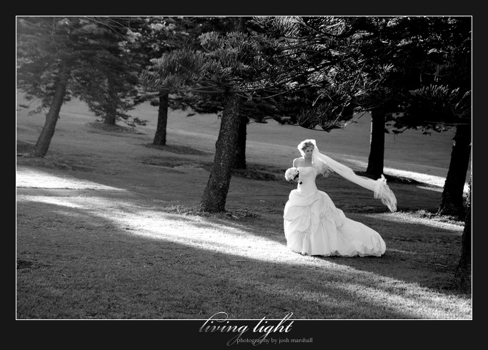 Intimate bride amongst pine trees. King Edward Park. Newcastle wedding photography.