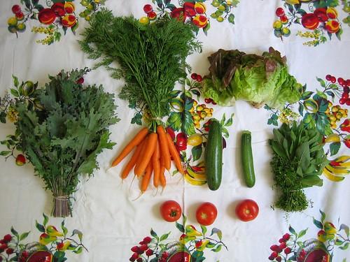 Veggie Box: Week Five