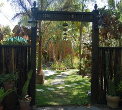 The Back Bamboo Gate welcomes you to our Bamboo Garden (jungle mama) Tags: usa wall garden gate bell florida miami stones bamboo tropical soe acalypha bamboogate ysplix goldstaraward travelsofhomerodyssey livinginajungle biscayneparkflorida gardenwithpaths gardenwithpalmsandbamboos chinesebamboogate