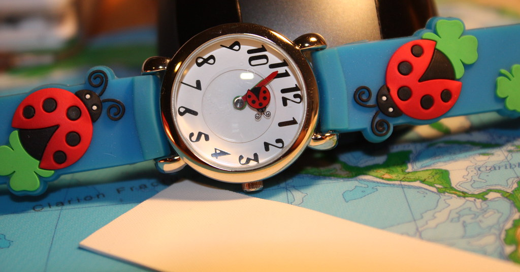 06/26/2009 Trapped ladybug