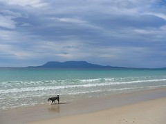 Lottie at Spring Beach; Maria Island in the background
