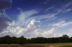 My Former Backyard (robsotophotography) Tags: blue trees sky clouds afternoon cumulus treeline stratus landscsape