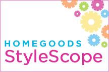 stylescope_img