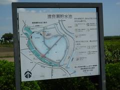 渡良瀬遊水池に到着