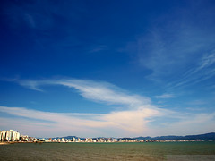 Bunny (Vitor Isaia) Tags: floripa brazil cloud rabbit bunny brasil mar nuvem coelho norte beira florianpolis