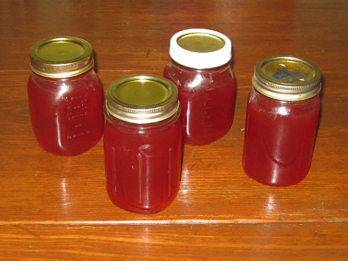 crabapple jelly