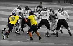 JTM AND LMJ (Michael Lechner) Tags: college sports oregon grit james football quarterback ducks eugene ncaa picnik guts eugeneoregon courage goducks oregonducks collegefootball autzen collegesports pac10 division1 lmj masoli oregonducksfootball jeremiahmasoli mightyoregon athleticscomplex lamichael ducksspirit