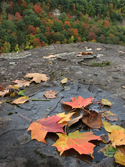 just getting started (Abizeleth) Tags: autumn red orange cliff green fall leaves yellow rock valley letchworthstatepark gorge geneseeriver bigmomma herowinner bitofadropoff