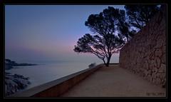 Contraluz (Mafr-Mcfa) Tags: sea mar mediterraneo amanecer nocturnas costabrava sagaro tokina1224f4 vosplusbellesphotos nocturnasamanecersagaro