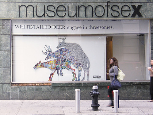 The Museum of Sex, NYC Photo by myself on Fifth Avenue, around 28th Street.