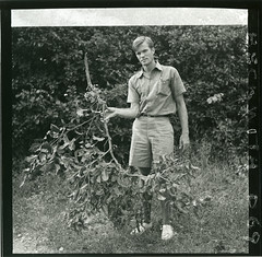 Hugo Curran with a tree specimen collected from a tree near Palu