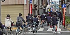Parade of cycling school kids in Matsumoto, Japan (JohannSchmidt) Tags: autumn tower castle japan jo matsumoto nagano naganoprefecture  matsumotojo matsumotocastle hirajiro