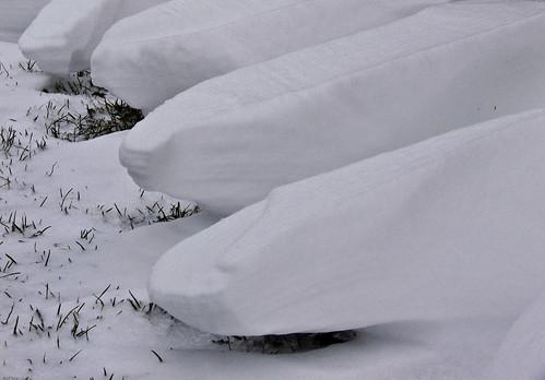 Hoodoos of snow