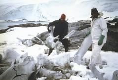 880131 Whalebone (rona.h) Tags: ronah cloudnine 1988 january portlockroy antarctic antarctica