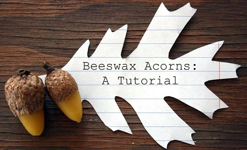 beeswax acorns tutorial