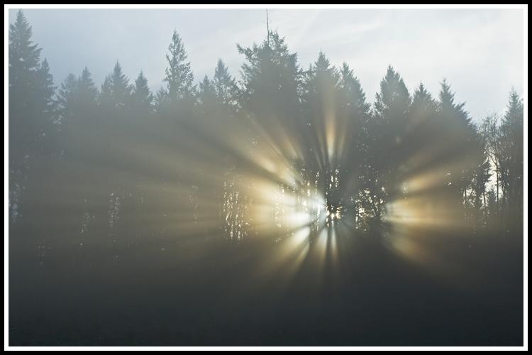sun_rays_2