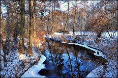 Tiergartenidylle (Lispeltuut) Tags: schnee winter snow berlin ice nature water germany wasser bach 1001nights eis mitte tiergarten gettyimages coth platinumheartaward vanagram 1001nightsmagiccity