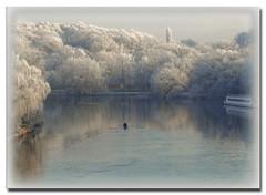 Winter am Fluss (Var. 2) Explored 29.12.2009, # 122