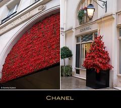 Chanel boutique, Paris (Scrumptious Venus) Tags: travel paris france store boutique chanel villageroyal lespritsudmagazine