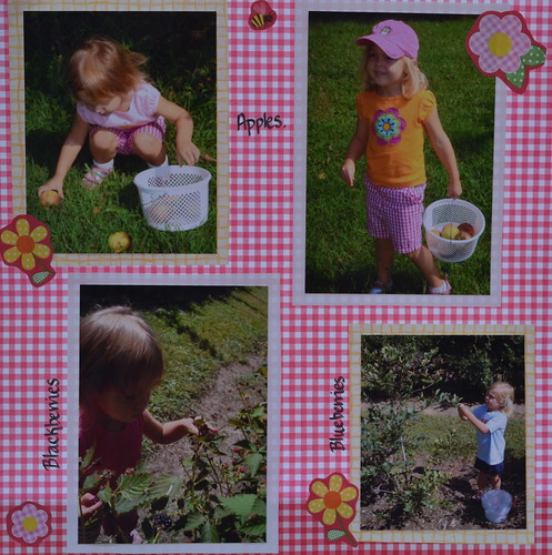 Scrapbook: 2010 August