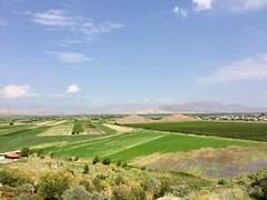 IMG_4175 (travelustful) Tags: armenia khorvirap yerevan church