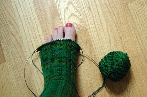 boxwood toe