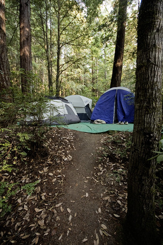 Tent city [219/365]