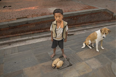 Hey mister, want a puppy ??? (still very busy, trying to catch up) Tags: nepal dog kid poor selling pashnipatinath