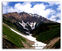 On the way of Lake Saful Maluk (Saking--Little Busy) Tags: trees white snow mountains green kingdom glacier stealth ics saqib saking concordians kingloi stunningwisdom safulmaluk
