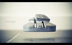 255/365 (H. Svanegaard) Tags: 50mm nikon 365 scarab levitate 18d project365 d80 group365 skarab svver