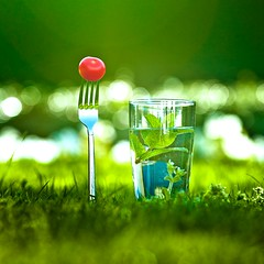 Cuba Gallery: Green / grass / red tomato / bokeh / water / fresh / natural / nature / photography / color
